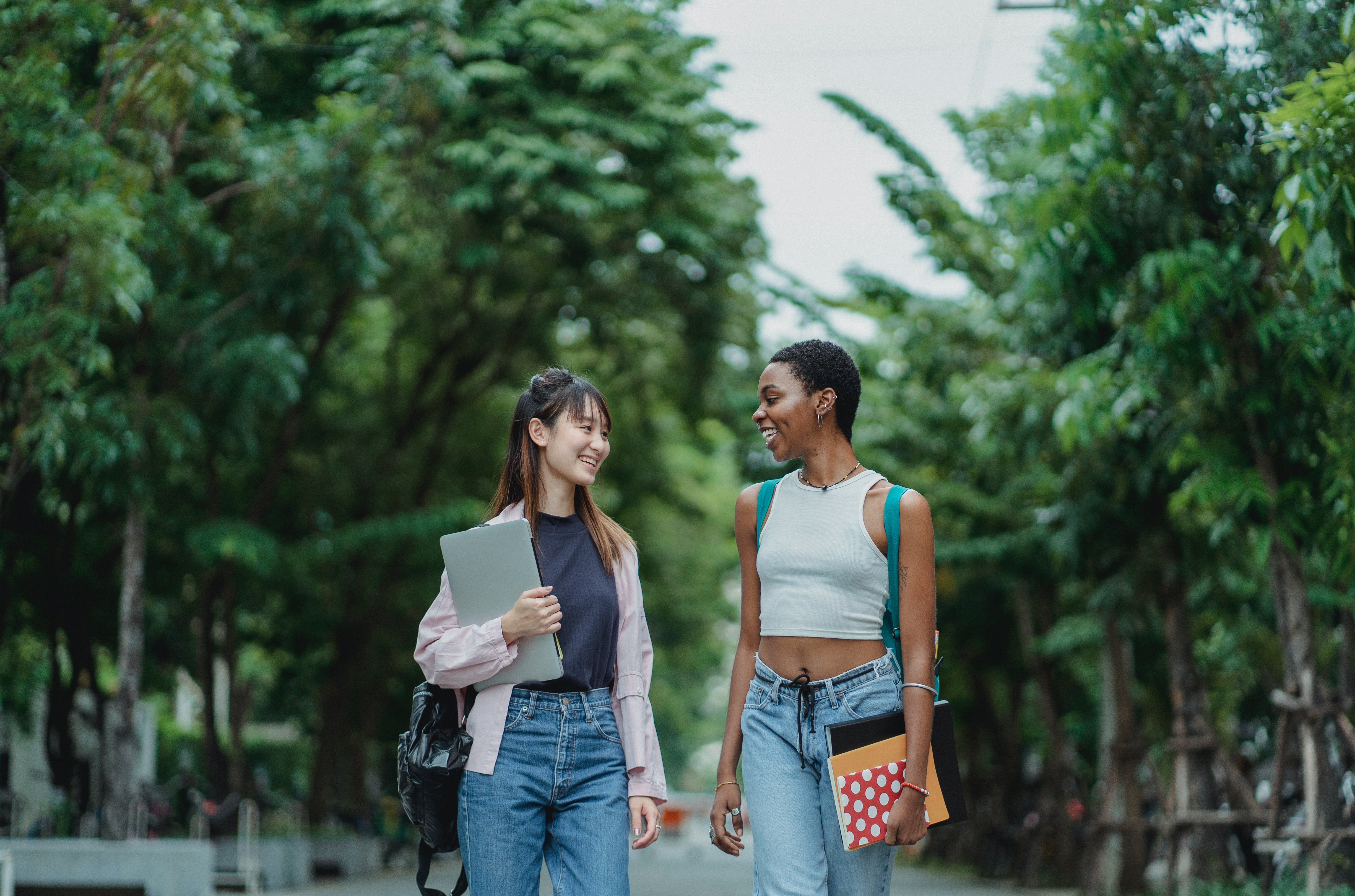 Talking Transfer: How to engage transfer students of different backgrounds